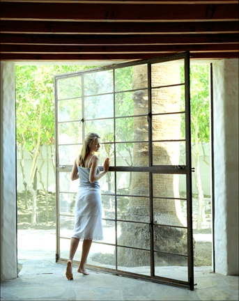 pivot glass wall/door