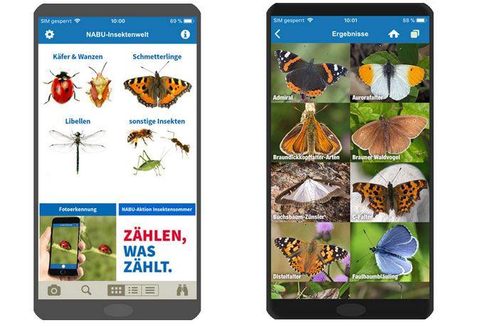 Nabu App Insektenwelt Insekten Insektenhaus Hummeln