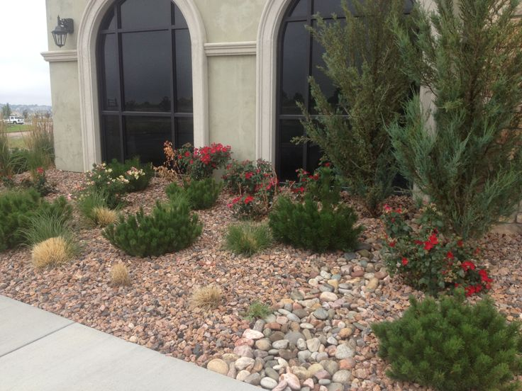 Reduce Water Use With Xeriscaping