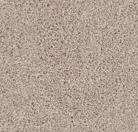 Shaw Fastball Carpet Bare Mineral Floor Matttroy