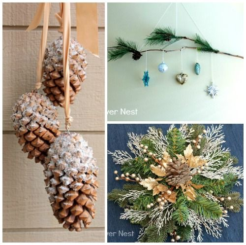 Pine Cone Crafts Pine Cones And Pine On Pinterest
