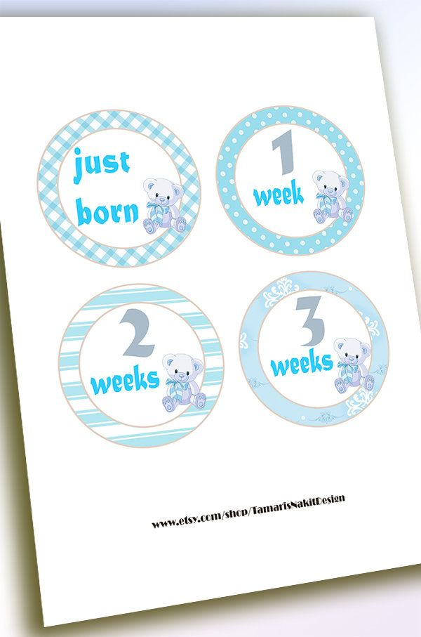 Monthly Baby Stickers Milestone,Baby Milestone Month Stickers,First Year Baby Boy Sticker,Milestone Stickers Baby First Year,Baby Shower-BB by TamarisNakitDesign on Etsy