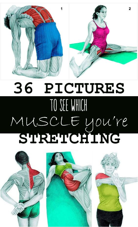 It doesn't matterif you're a chronic sitter, a daily exerciser, or a weekend warrior, most understand the benefits of stretching. It sends blood stream toyour muscles and offers your joints assistance in moving through their full scope of movement.