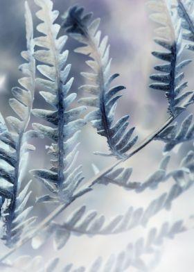 print on steel Landscape fern flora nature