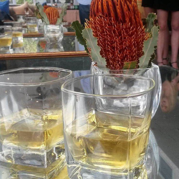 Tonight we are at the Monkey Shoulder launch. We drinking  whiskey at the @12apostleshotel