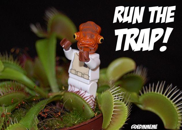 humor memes   Run-the-trap-EDM-Meme.png   Kandi Kid ...  humor memes   R...