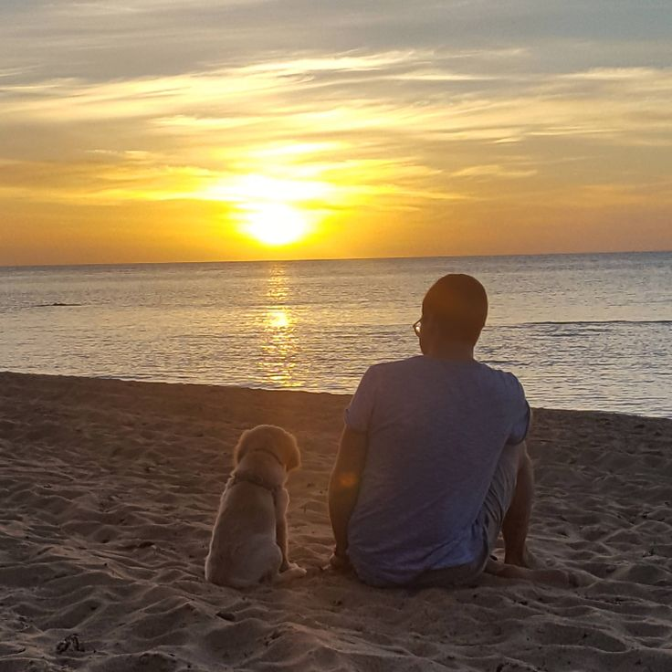 A man and his puppy watching the sun set http://ift.tt/2ghg2TO