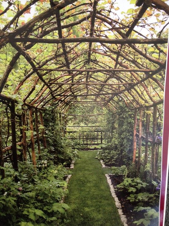 Gardener Madison Cox   Client in South Kent Connecticut       127 West 26th Street, 9th Floor New York, NY, 10001 USA Telephone: (1) 212 242 4631 Facsimile: (1) 212 807 8081 Email: madisoncox@madisoncox.com
