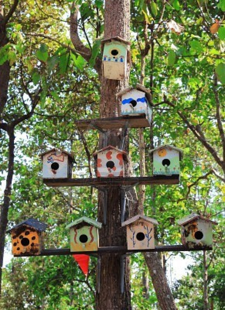 Amazing space decor multiple birdhouses shelved in one tree for Different types of birdhouses