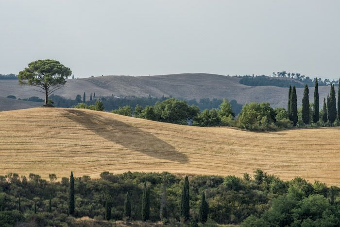 Toscana: una vacanza estiva con la brezza tra i capelli! #toscana #italia #italy #vacanza #holidays #summer #estate