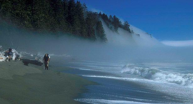 west-coast-trail-fog off the Pacific Ocean