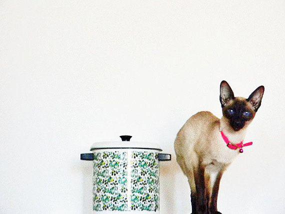 Mod Enamel Pot Lid Basket Steamer Cookware - Retro Midcentury Madmen Mad Men Boho Groovy Modern - 1960's Complete - Flowers AQUA Lime