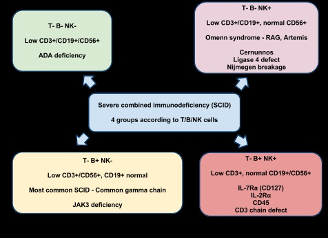 protein c deficiency treatment guidelines