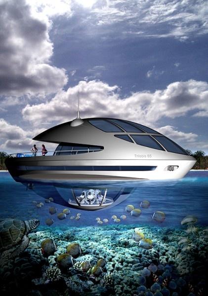 Amphibious 1000