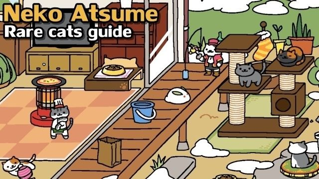 "Getting rare cats to visit is Neko Atsume's ""end game"" and it's kind of a pain."
