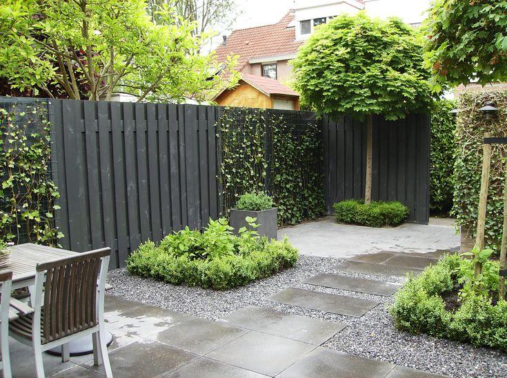 Houten schutting zwart en hedera schutting. Eenvoudige beplanting .             Buxus hortensia en een mooie caltalpa     André Meilink