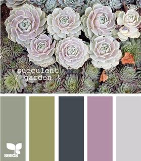 Succulent Garden #Colour #Grey #Green new living room colour scheme?