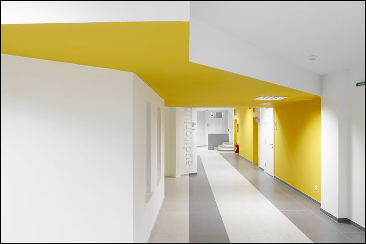Destroying form with color. SSST UNIVERSITY INTERIOR