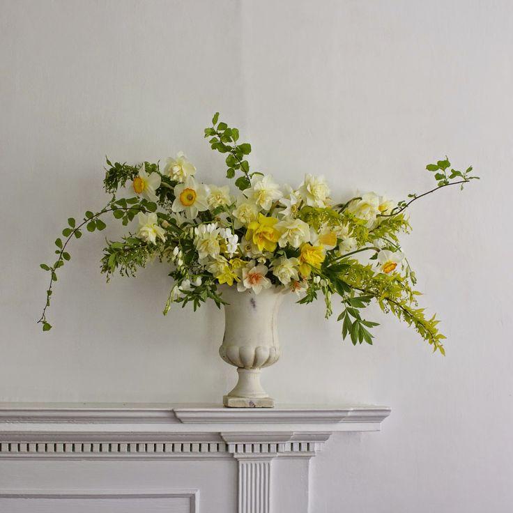 fairest flowers farm: daffodils arranged