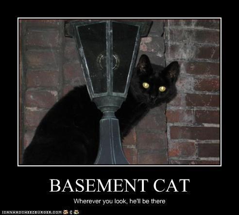 Ceiling Cat Know Your Meme