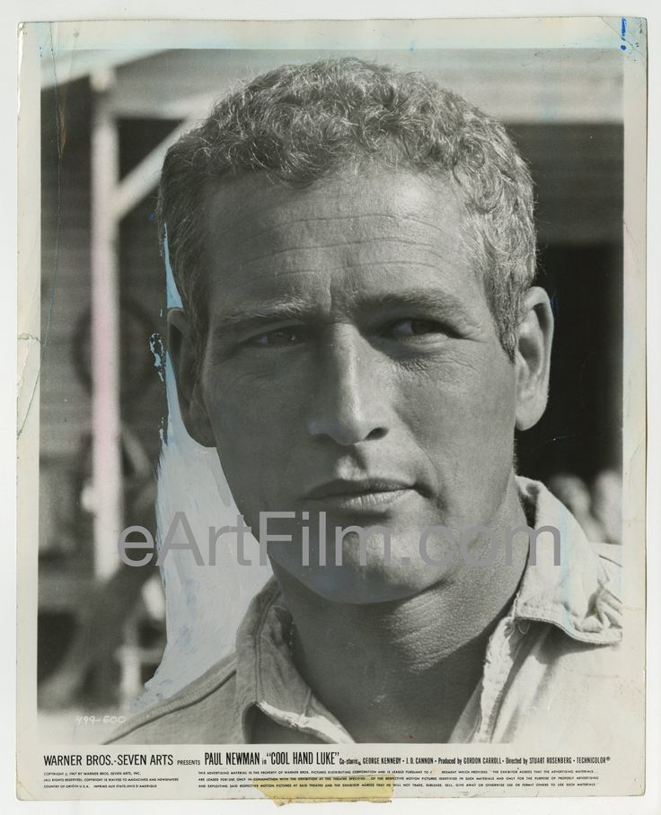 Every poster we add is unique: Cool Hand Luke-Pa... Check it out! http://eartfilm.com/products/cool-hand-luke-paul-newman-original-8x10-still-1967?utm_campaign=social_autopilot&utm_source=pin&utm_medium=pin