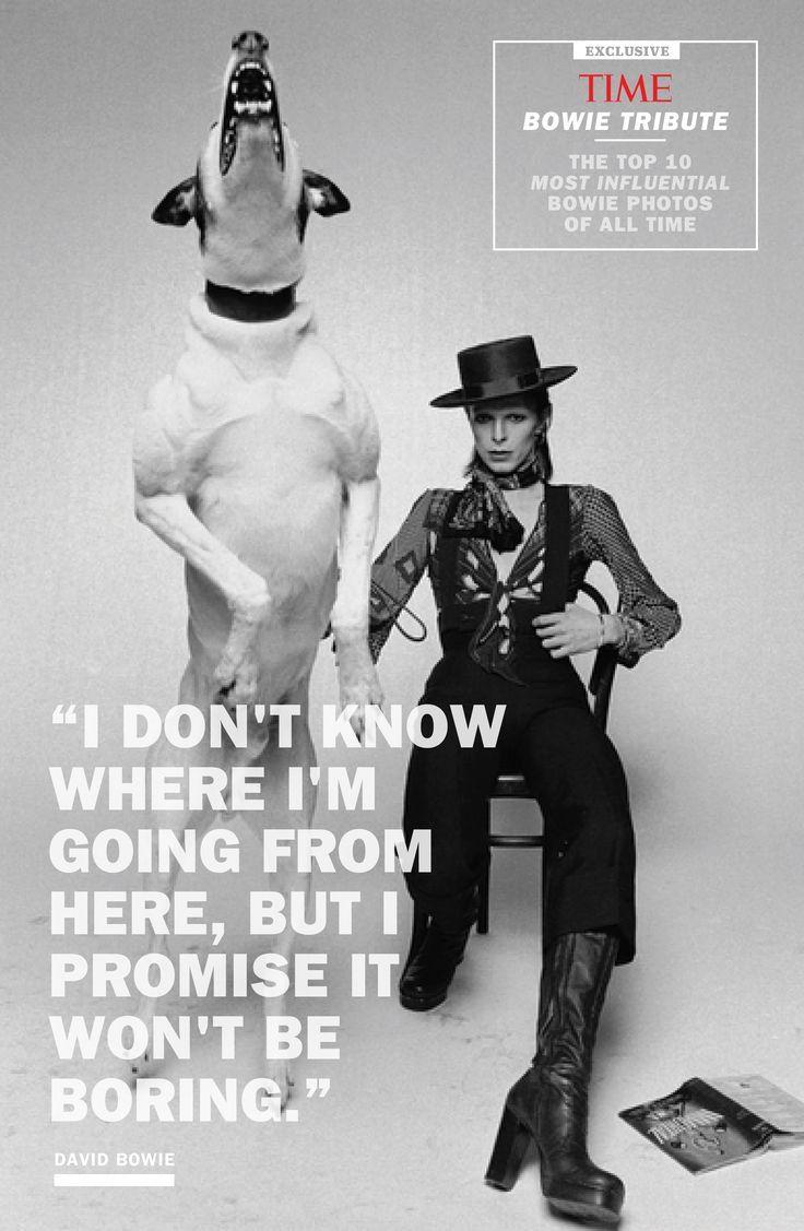 Photos From Davy Jones To Ziggy Stardust
