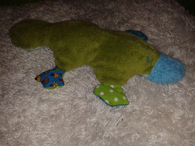 Platypus toy - Kacsacsőrű emlős - imádom :-)