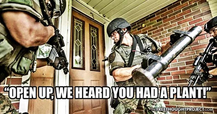 Paradigm Shift: State Courts Rule Police Raids Over Weed Were Illegal and Uncalled For