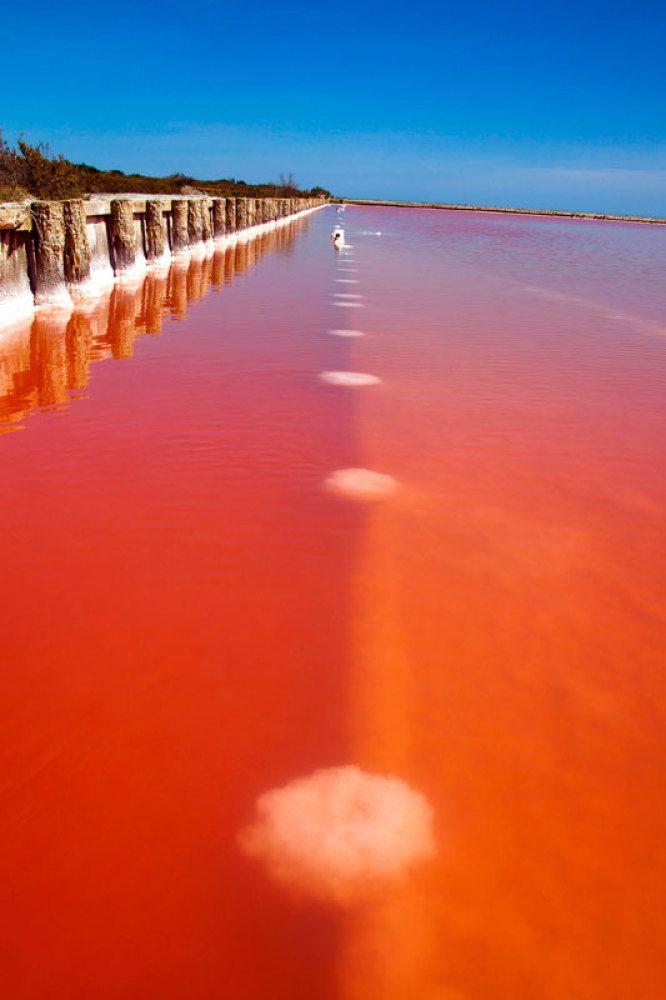 PHOTOS. Les lacs rouges de France, phénomènes salins de Camargue