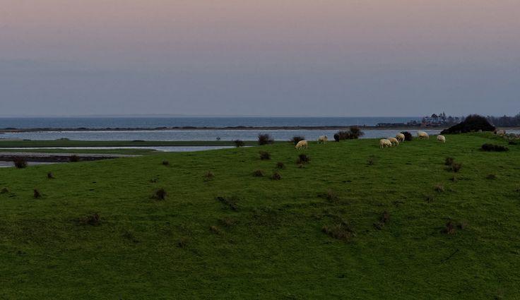 Fyns Hoved landscape at sunset in December - Funen, Denmark | Flickr - Photo Sharing!