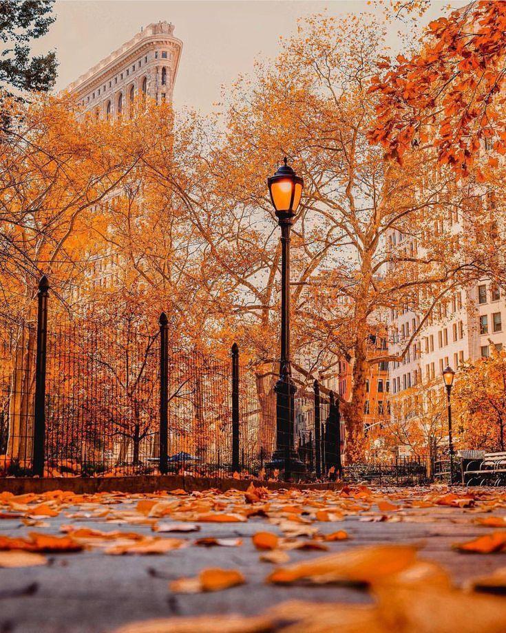 New York Citys Flat Iron Building im Hintergrund. …