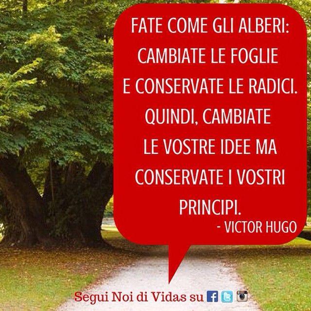 Non a caso l'albero è il nostro simbolo, i principi la nostra guida... #citazioni #VictorHugo