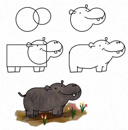 how to draw hippo   fact about hippo: Hippo  farting  through the mouth ....really??