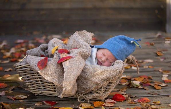 Обои картинки фото ребенок, новорожденный, корзина, сон (с ...