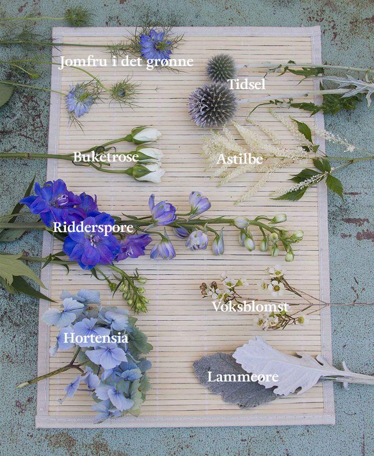 Boost din indretning med vilde, blå blomster