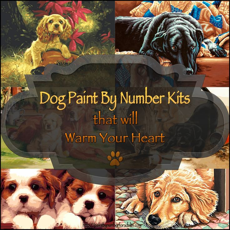 Love these dog paint by number kits! #Dogs #PaintByNumberKits #Gifts #hobbies  http://paintbynumberforadults.com/dog-paint-by-number-kits/