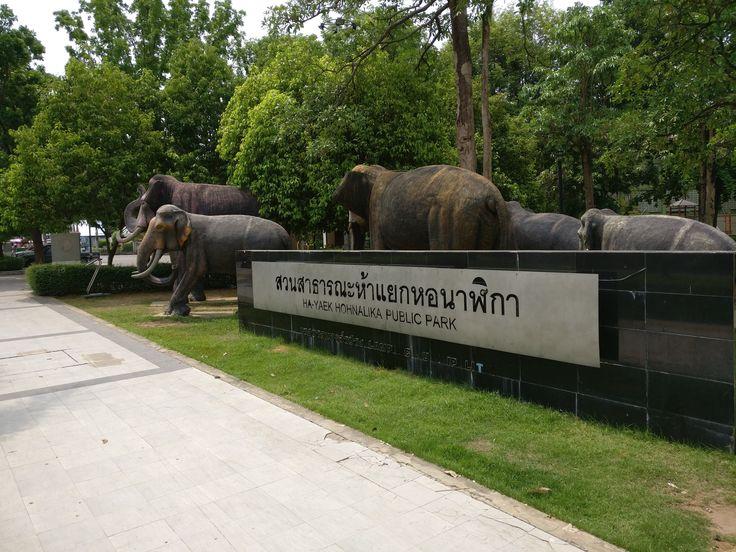 Lampang-park-elephants