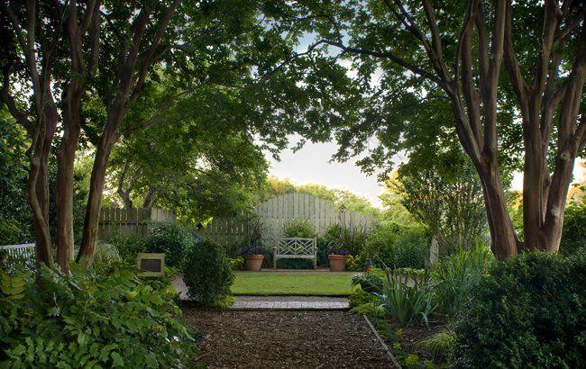 mr  casons vegetable garden