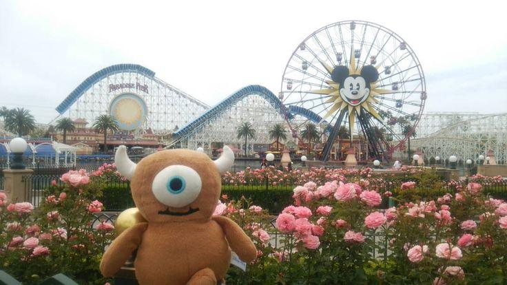 (あしたはおいてけぼりにならないように) 明日は忘れないぜマイキー  #Disneycaliforniaadventure  #paradisepier  #californiascreamin  #mickeysfunwheel  #littlemikey  #monstersinc #Pixar #america #california #anaheim #disneygoodsreview #ディズニーカリフォルニアアドベンチャー #リトルマイキー #ディズニーグッズ #モンスターズインク by mikichamu726