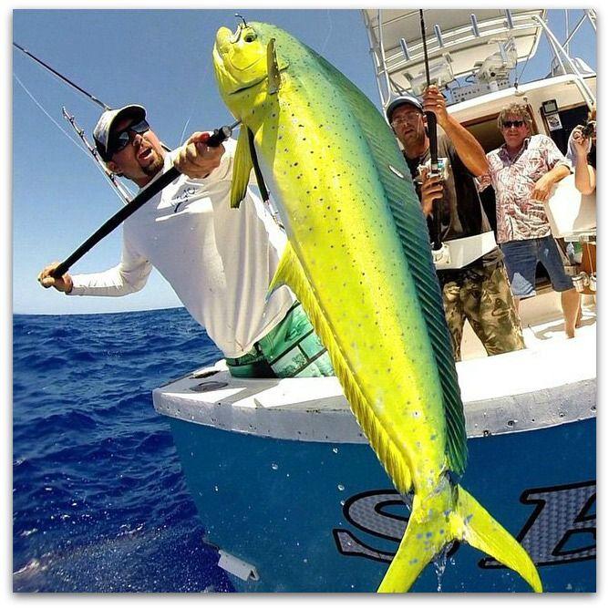 25 best fishing charters ideas on pinterest for Best deep sea fishing
