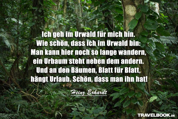 Lasst uns Urlaub pflücken wie Heinz Erhardt!