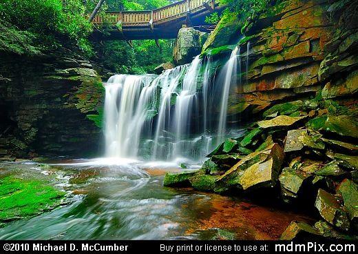 Blackwater Falls St Park