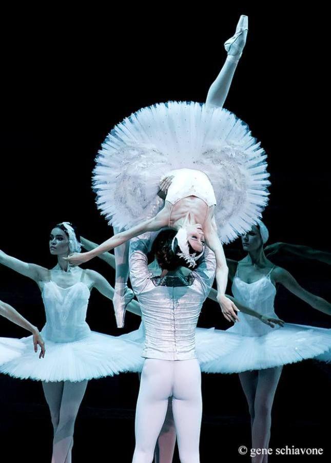 """© Gene Schiavone  Svetlana Zakharova Светлана Захарова, """"Swan Lake"""", Bolshoi Ballet"""