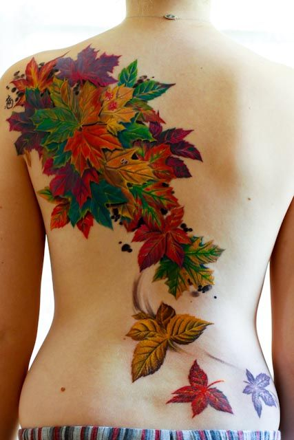 Leaves Colorful Back
