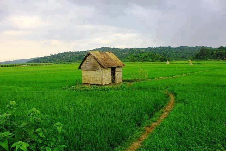 Bamboo Hut in Rural Bangladesh