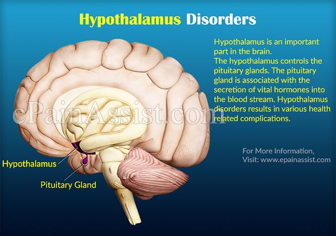 damage to the hypothalamus Hormonal imbalances after brain injury brain injury may occasionally cause damage to the hypothalamus and/or pituitary gland, which are small structures at the base of the brain responsible for regulating the body's hormones.