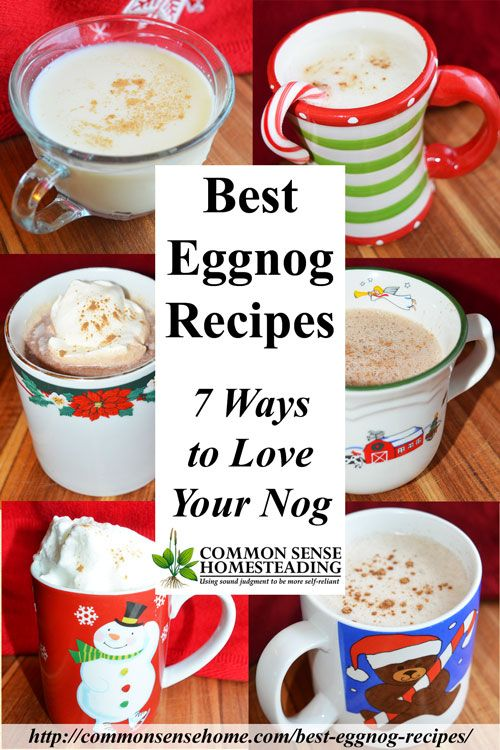 Best Eggnog Recipes - Create a family tradition and skip the preservatives with these easy homemade eggnog recipes.Traditional eggnogs, eggless and dairy-free