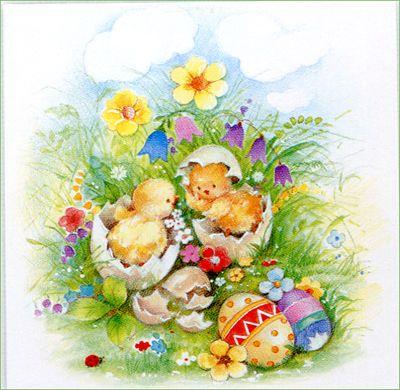 uova con pulcini