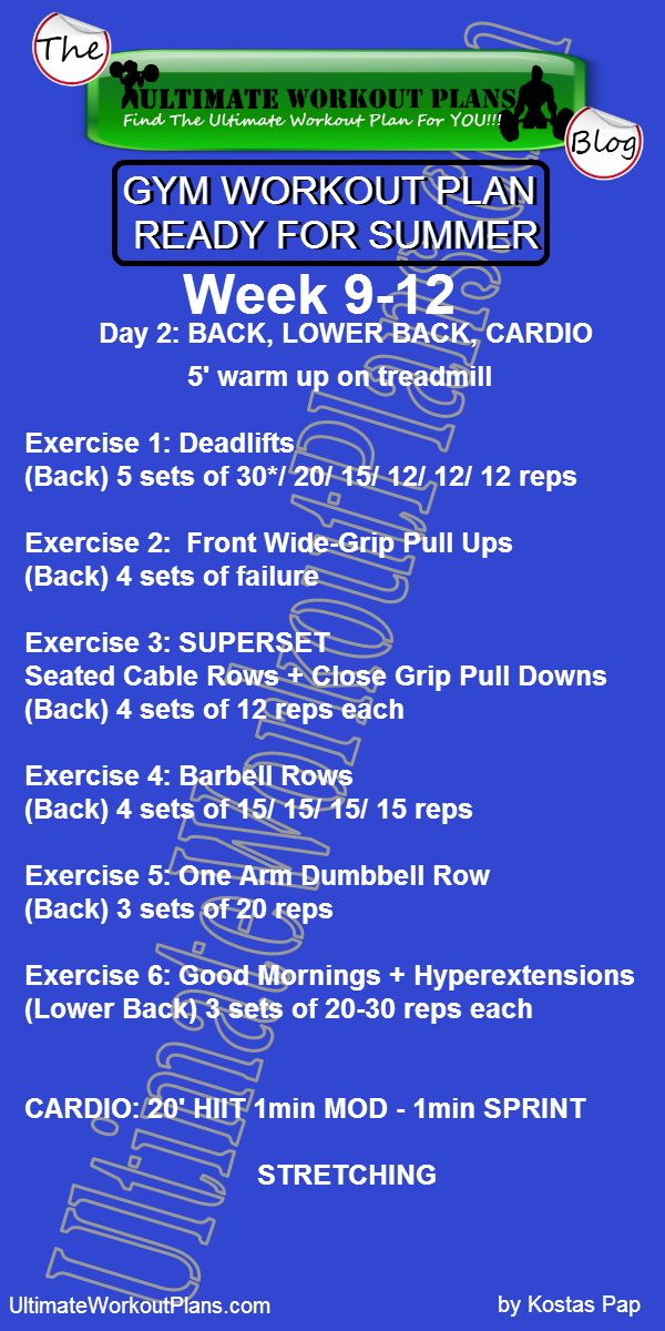 3 GYM WORKOUT PLAN READY FOR SUMMER MEN DAY 2 BACK LOWER BACK CARDIO » UltimateWorkoutPlans.com
