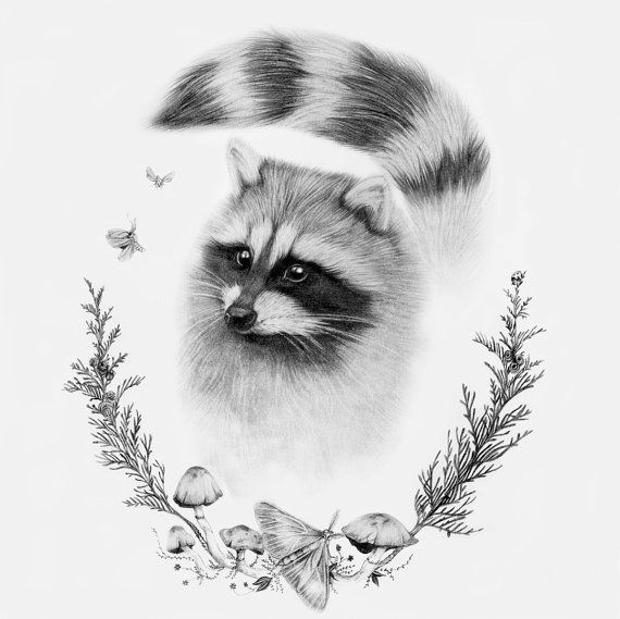 Raccoon Woodland Art Print 12x12 by BurrowingHome on Etsy